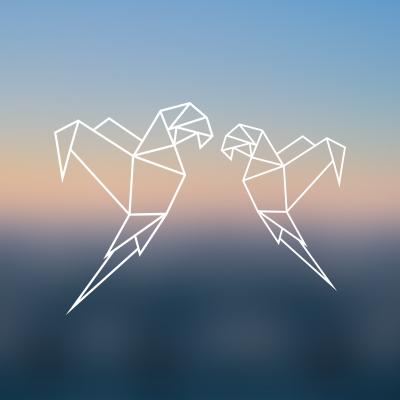Deux Drôles d'Oiseaux